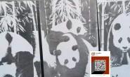 混凝土成像之熊猫